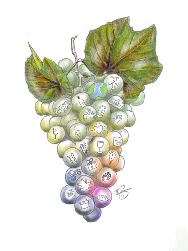 Weintraube-Vielfalt - Indivinoell